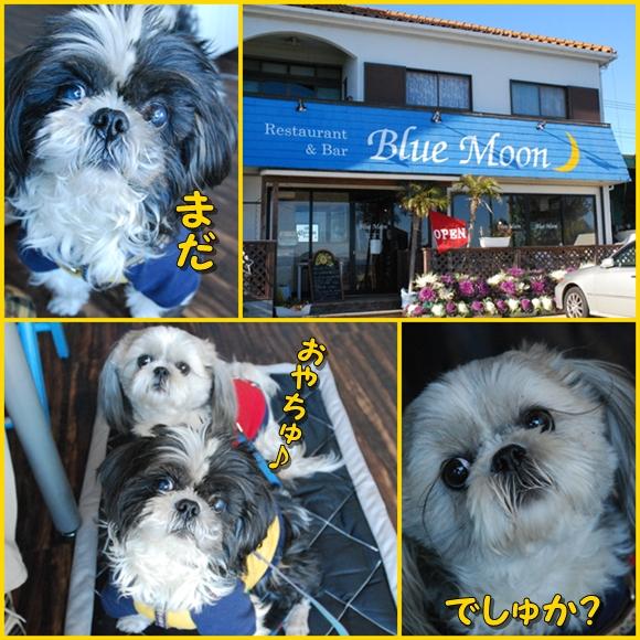 miura0125-2.jpg