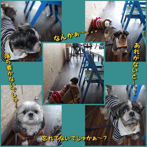 miura0211-4.jpg