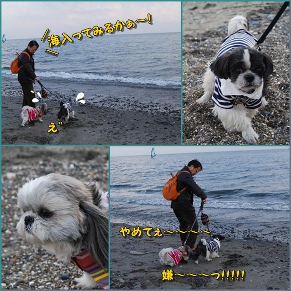 miura0211-6.jpg