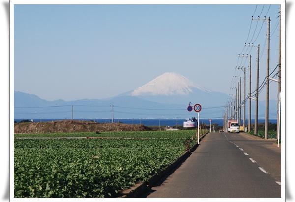 miura2008-11-30-15DSC_0119.jpg
