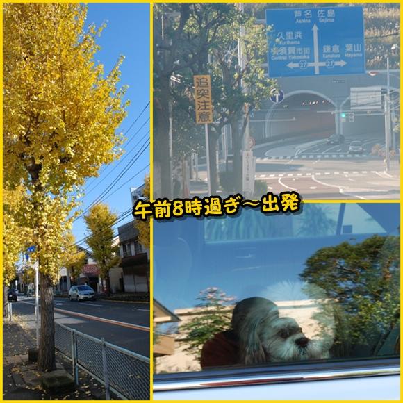 miura2008-11-30-2.jpg
