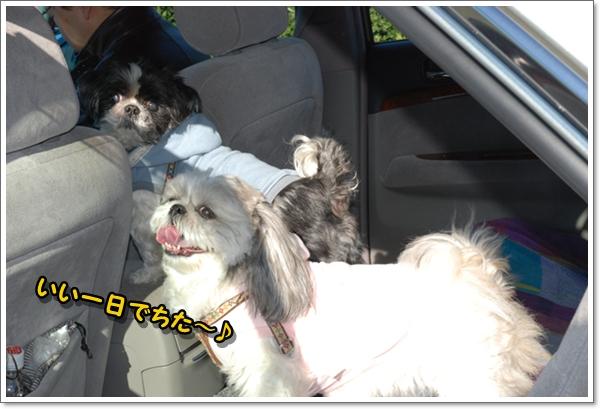 miurafuji12DSC_0187.jpg