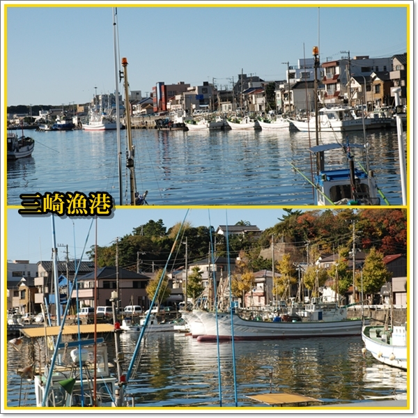 miurafuji2.jpg