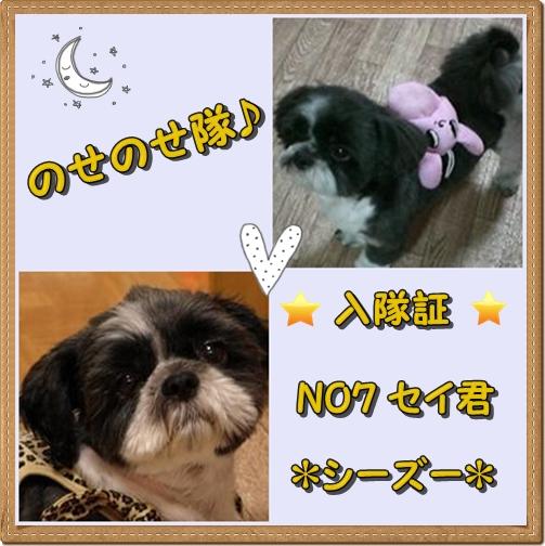 nosenosesei1.jpg