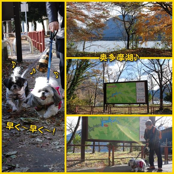 okutama2008-11-23-8.jpg