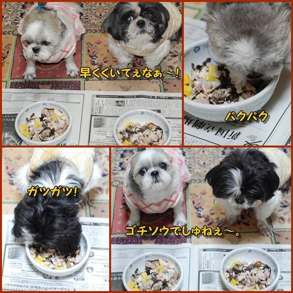osechi090101-6.jpg
