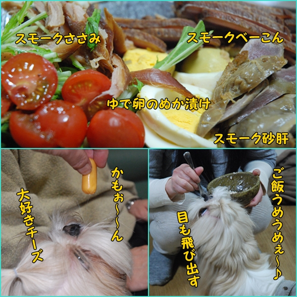 ttukayama0404-33.jpg