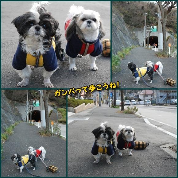 tukayama0106-1.jpg