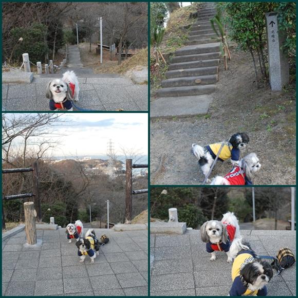tukayama0106-12.jpg