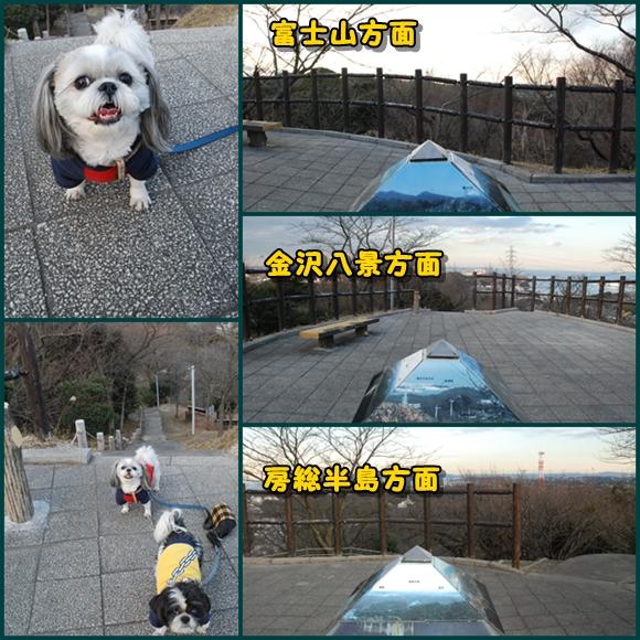 tukayama0106-13.jpg