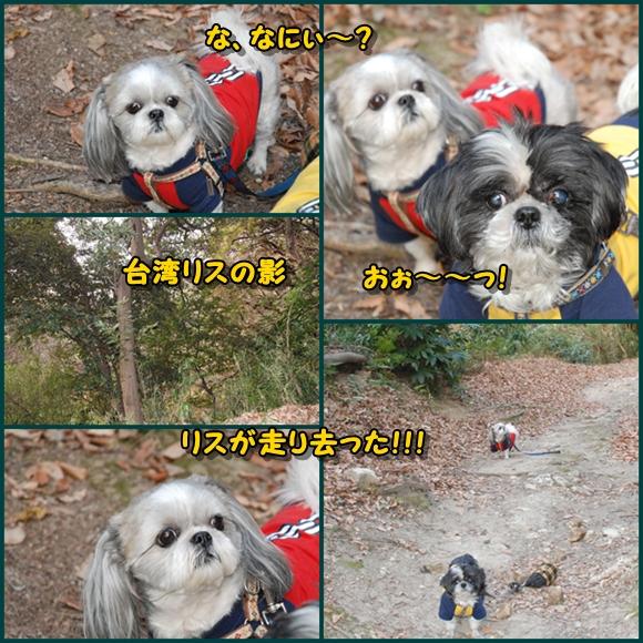 tukayama0106-14.jpg