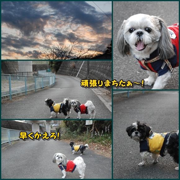 tukayama0106-17.jpg