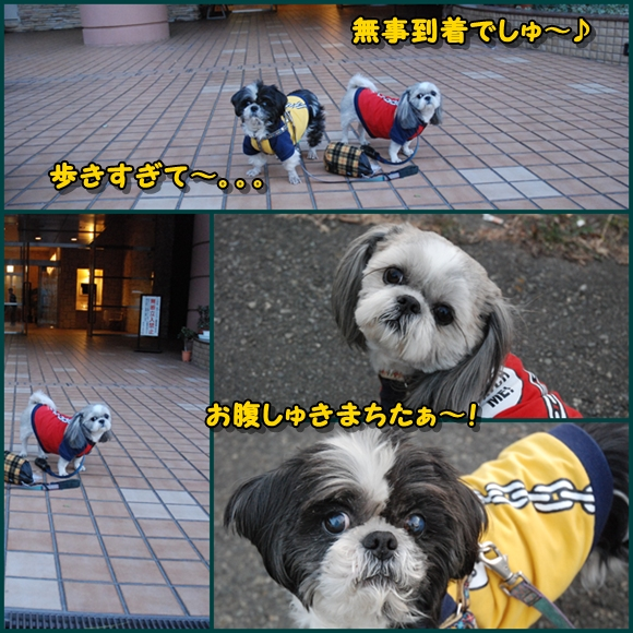 tukayama0106-18.jpg