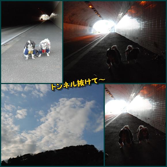 tukayama0106-2.jpg