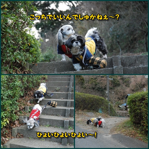 tukayama0106-4.jpg
