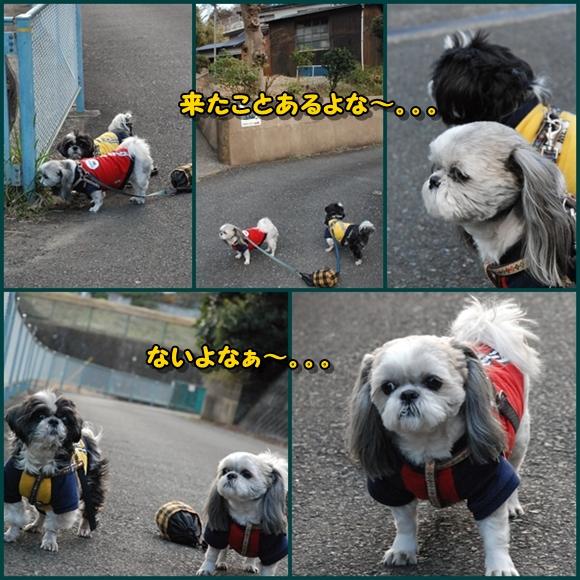 tukayama0106-5.jpg