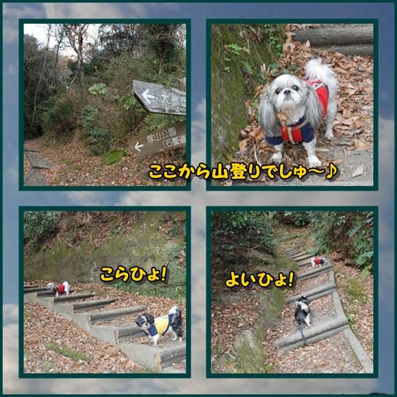 tukayama0106-6.jpg