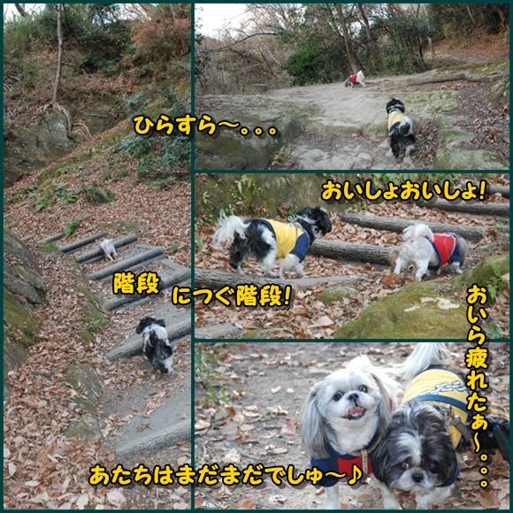 tukayama0106-7.jpg