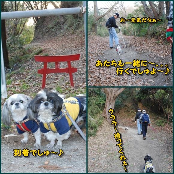 tukayama0106-8.jpg