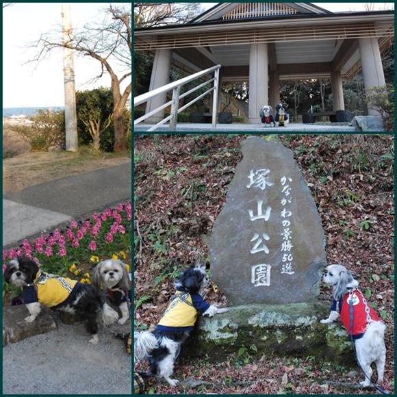 tukayama0106-9.jpg