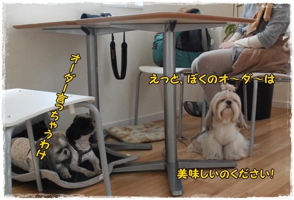 tukayama0404-18DSC_0080.jpg
