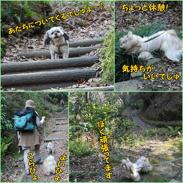 tukayama0404-20.jpg
