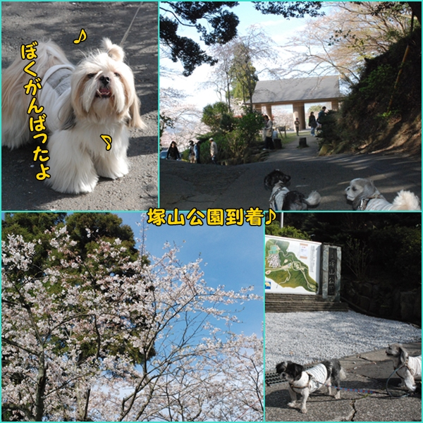 tukayama0404-22.jpg
