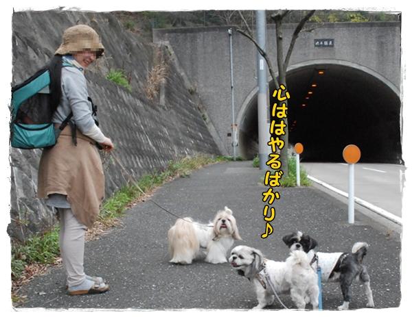 tukayama0404-33DSC_0110.jpg