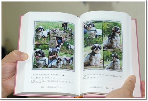wbook4DSC_0013.jpg
