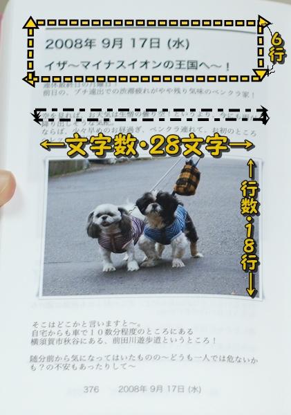 wbook5DSC_0012.jpg