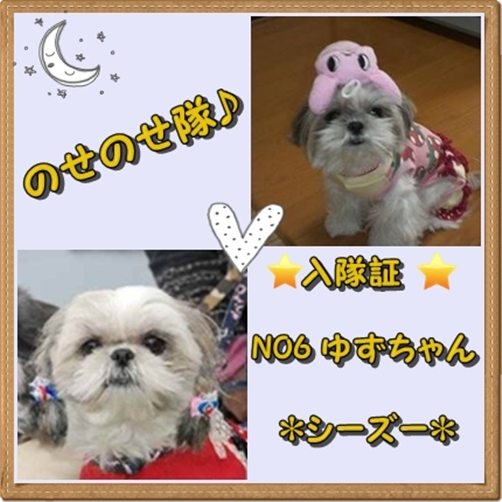yuzunosenose1.jpg
