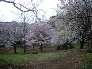 清水寺公園