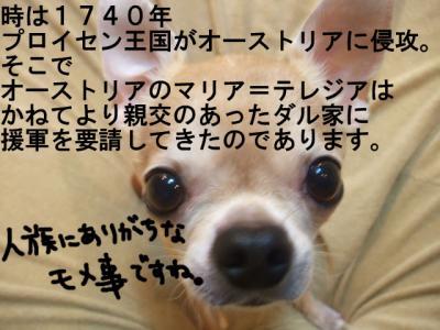 20-2_20090523091520.jpg