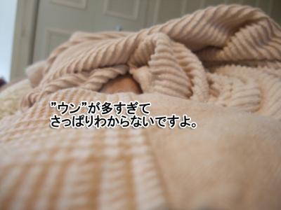 DSCF7592p.jpg