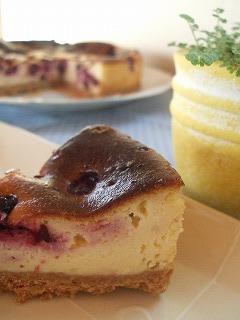 ちょいキモ■チーズケーキ