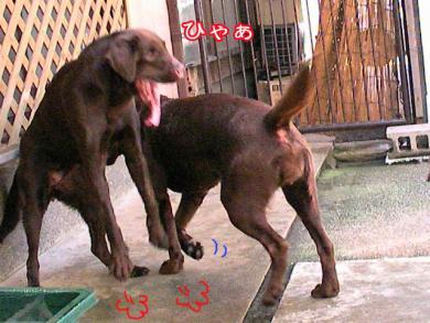1_20080919211007.jpg
