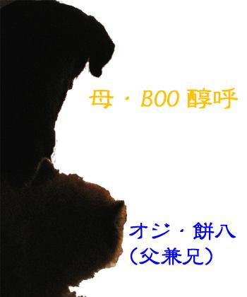 BOO&へい