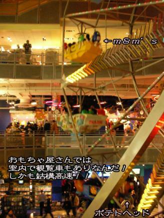 SANY0247_20090107234408.jpg