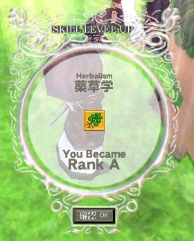 mabinogi_2009_04_13_004.jpg