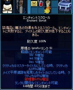 mabinogi_2009_06_21_013.jpg