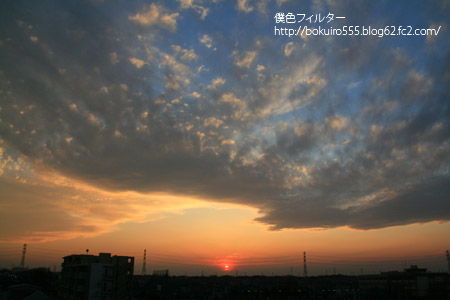 IMG_5103blog