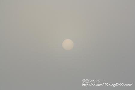 IMG_5162blog.jpg