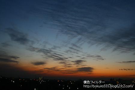IMG_8952blog.jpg