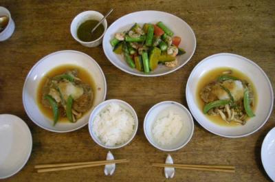和風ハンバーグと彩り野菜のサラダ!2008.6.11