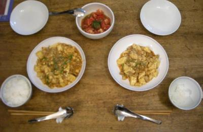 麻婆豆腐とトマトサラダ 2008.6.27