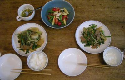 野菜満載の夕食!2008.6.30