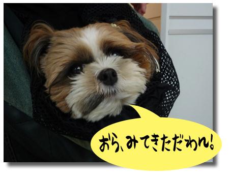 08_0915_01.jpg