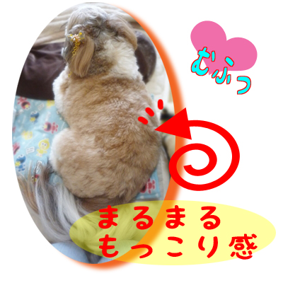 09_0901_02.jpg