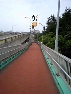 20080711110846.jpg