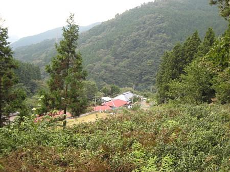 2008102501.jpg